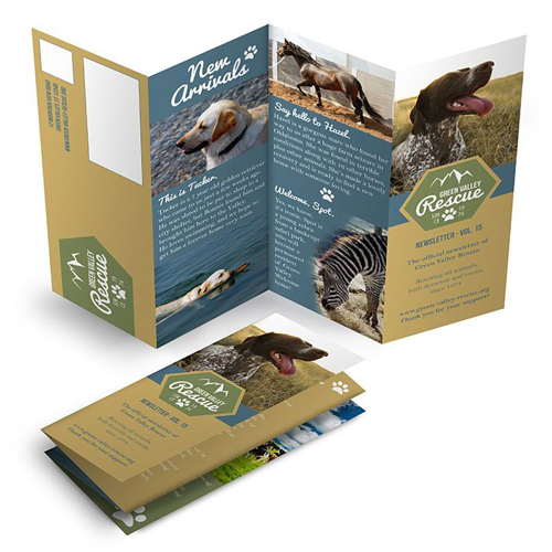 Accordion Fold Newsletters